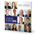 Download our 2016 Year In Review